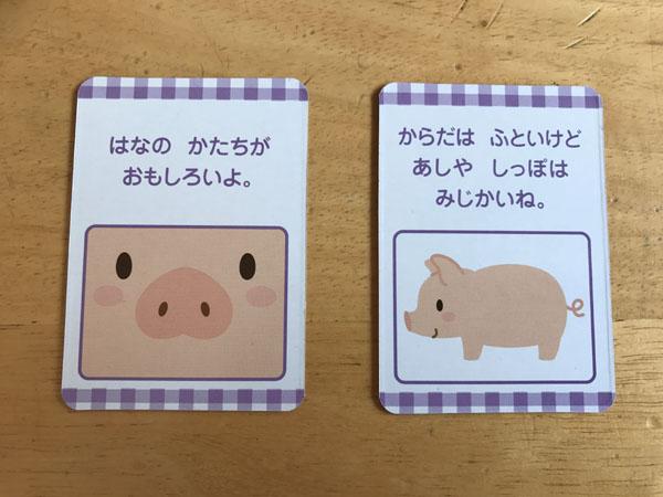 動物カード