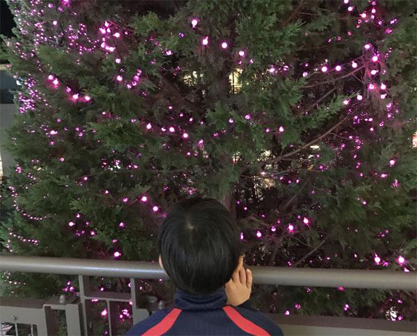 クリスマスプレゼント/